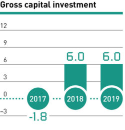 Gross capital investment 2017–2019
